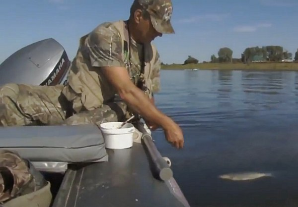 ловля леща поплавочной удочкой на течении