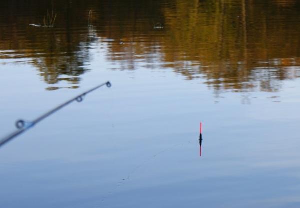 рыбалка с поплавком