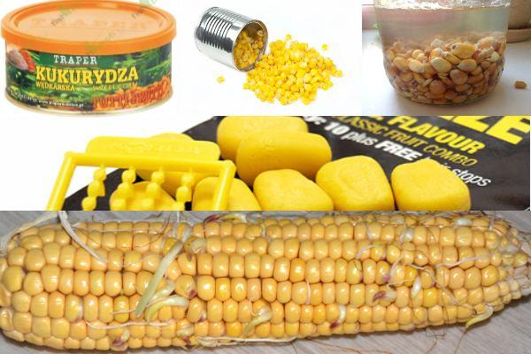виды кукурузы