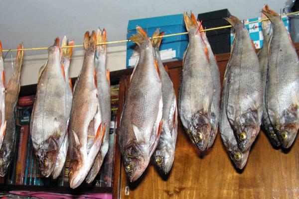 Рецепт вяленая красная рыба