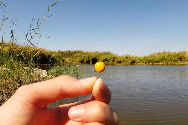 рыбалка как запарить к