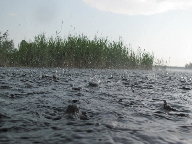 Дождь на реке