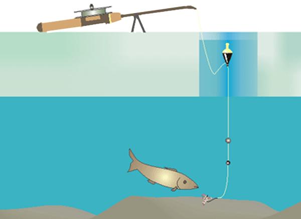 все о рыбалке оснастка поплавочной удочки