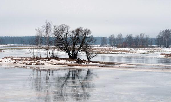 Оттепель на реке