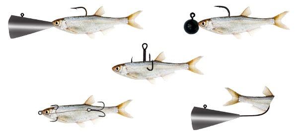 как ловить судака на тюльку
