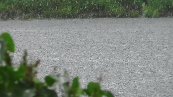 Дождь на пруду
