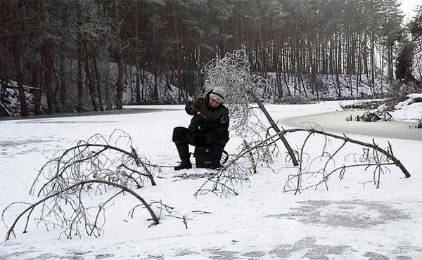 Зимний коряжник