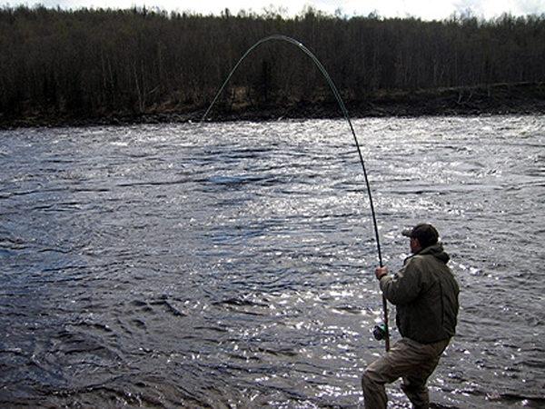 Вываживание рыбы