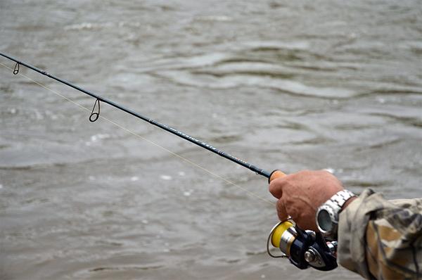 лучшее удилище для ловли голавля
