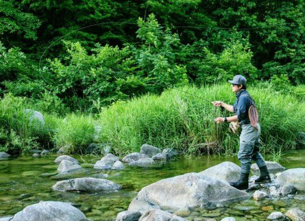 ловля на ручье