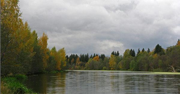 Пасмурный день на реке
