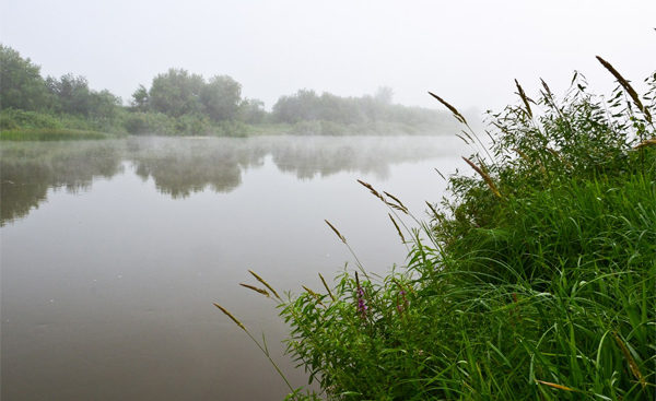 Туманное утро на реке