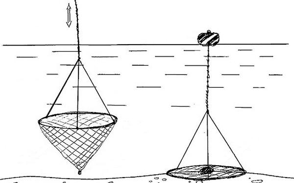 Как сделать экран для ловли рыбы своими руками
