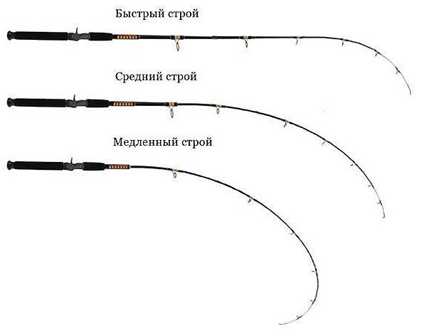 Как ловить окуня разными способами и на какие оснастки