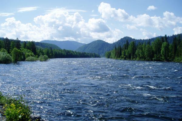 река с хариусом