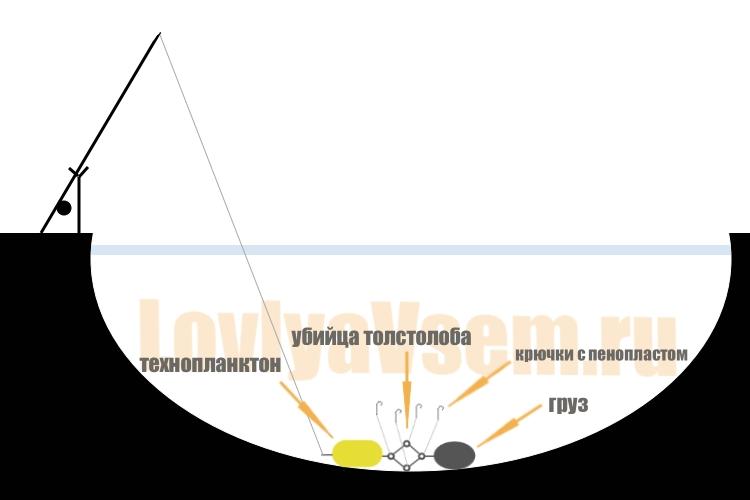 Как ловить толстолобика и правильно подобрать приманки