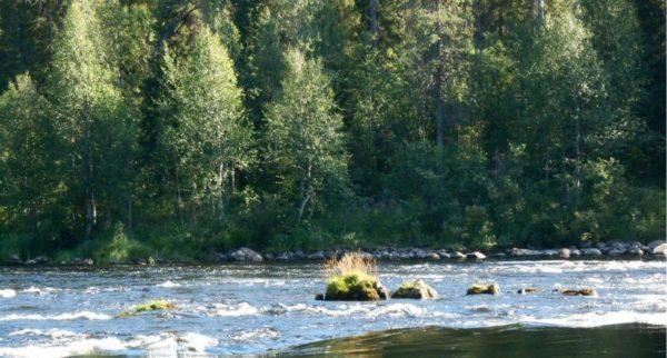 порог на реке