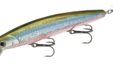 Lucky Craft Flash Minnow 170 SR