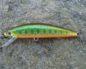 jackson trout tune